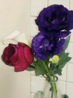 またもお花の衝動買い…